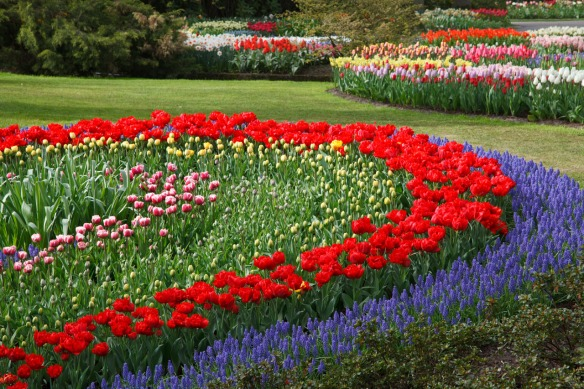 flower-garden-11291224875Iks